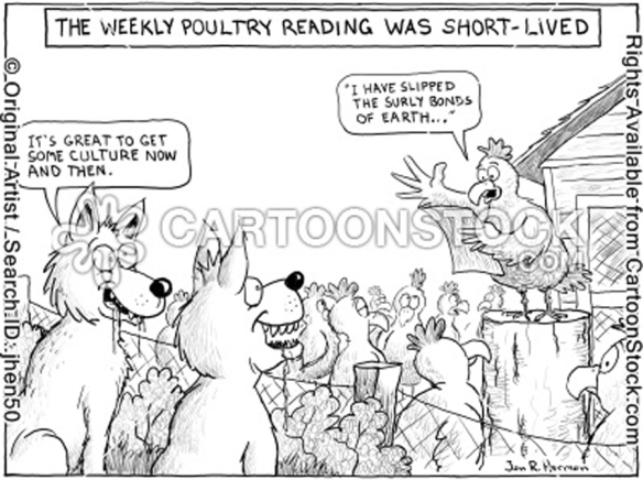 poultry reading
